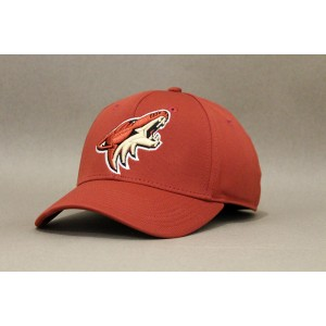 Кепка Adidas NHL Arizona Coyotes  В НАЛИЧИИ в Ярославле